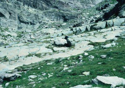 Valle delle Meraviglie